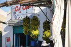 Egitto Novembre 2008 25
