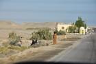 Egitto Novembre 2008 6